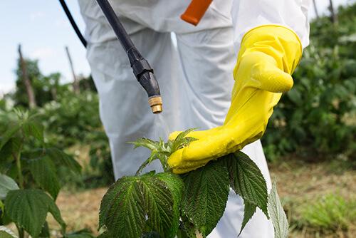 pesticide agroeliek